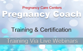 Pregnancy Coach Training